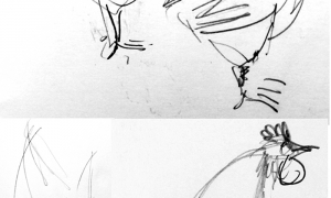 Sketches of chickens, pencil