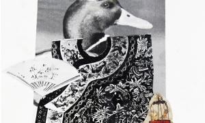 Mandarine Duck, collage