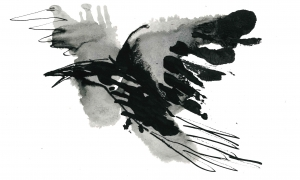 Crow-and-a-shadow