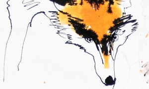 Fox's head, pen&ink and gouache on paper