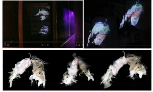 Pink-Bird-projections-inside-the-Meat-Safe