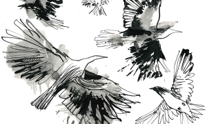 Drawing-of-birds-for-top-of-the-stairs-installation